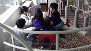 Kids Playing On Aso Boy Train In Kyushu