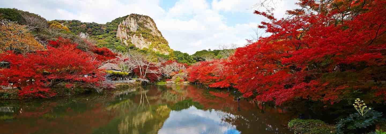 kyushu autumn