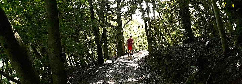 Fukuoka hiking