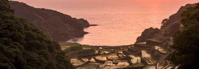 Kyushu rice terraces
