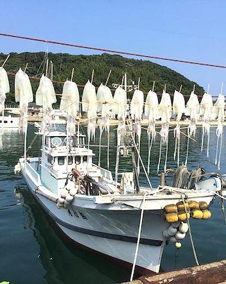 yobuko-squid-boat