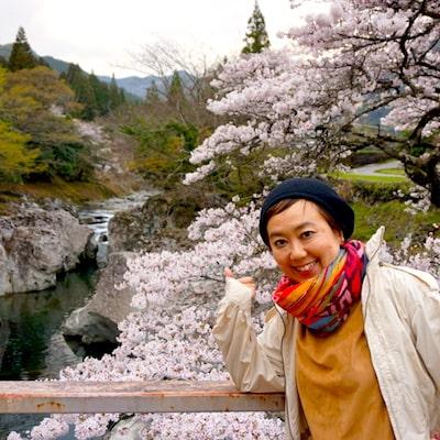 Sakura nature view